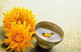 Hoa Cúc - Loài hoa tượng trưng của Tết Trùng Cửu